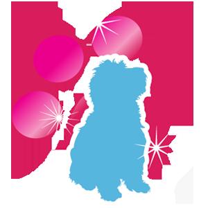 Hund Kläder, Hundens T-shirt Diva Pink, Bomull T-shirt för Hunden