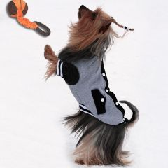 Sporty Dog Basket Ball Jacket, DiivaDog