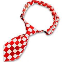 Hundslips | Kattslips Rally | Glansig slips | DiivaDog.se